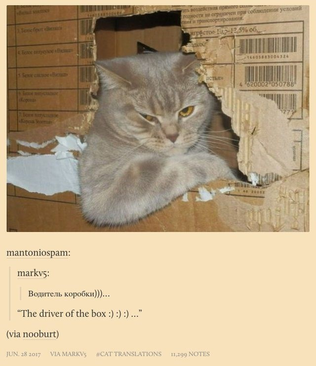 "russian cat translation - Cat - tropiocte orpaoren npar co6tiOtemor yezonn TpacnoptiposaioE Tonefout Be pecroe 12.5% o6 Eeroe eyehoe s83004324 Setoe c e sc aCTS 4 620002 050788 tcaoe Sone sy 2000 mantoniospam: markvs: Водитель коробки))).. ""The driver of the box:))).. (via nooburt) JUN. 28 2017 VIA MARKVS #CAT TRANSLATIONS 11,299 NOTES soons"