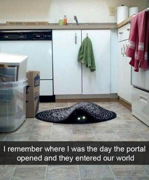 Cat under a rug with glowing eyes that looks like he just dropped in from a portal to another world