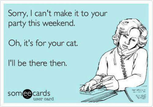 Text - Sory, I can't make it to your party this weekend Oh, it's for your cat. I'll be there then. somee cards user card