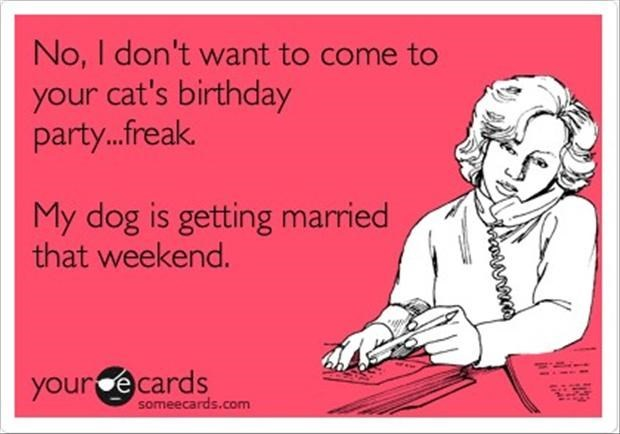 Text - No, I don't want to come to your cat's birthday party...freak. My dog is getting married that weekend. your e cards someecards.com