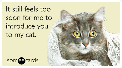 SomeCards gag greeting card about it being too early to introduce someone to your cat