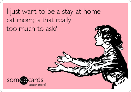 Text - I just want to be a stay-at-home cat mom; is that really too much to ask? someecards user card