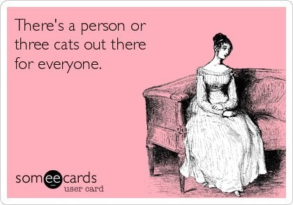 Text - There's a person or three cats out there for everyone. someecards user card