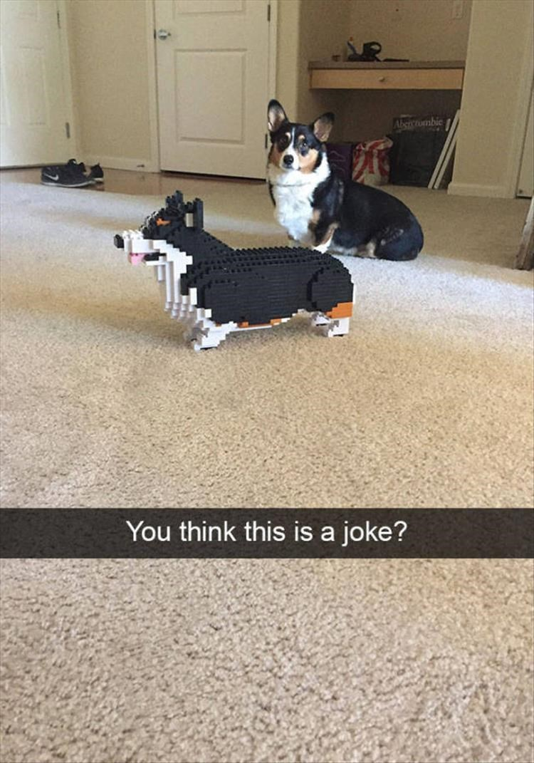 photo of a dog next to a lego dog
