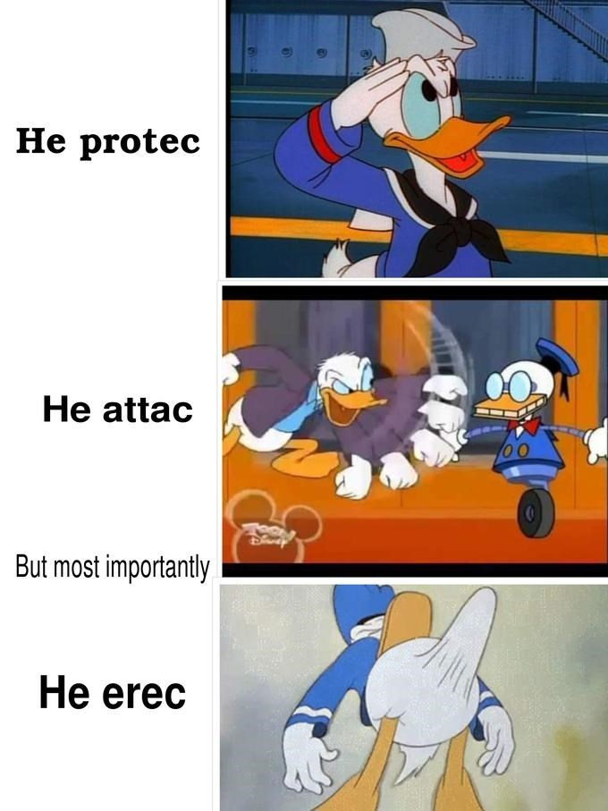 Donald Duck dank meme protec/attac and erec