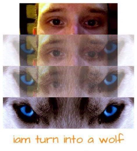 Cringeworthy transition into a wolf