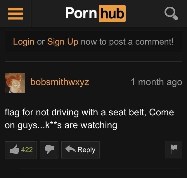 Funny comment on Pornhub where a user flagged the video because they were not using a seat belt.