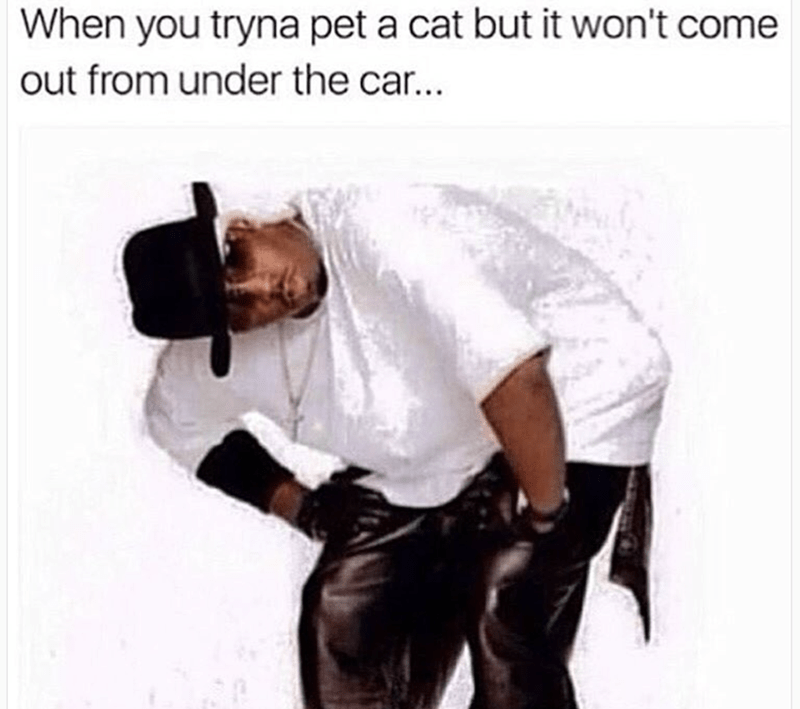 Human - When you tryna pet a cat but it won't come out from under the ca...