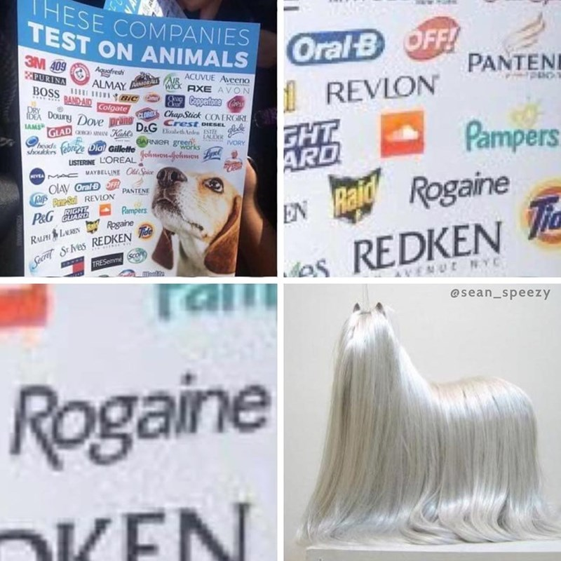 Funny meme about animal rights and companies that test on animals, photo of the rogaine logo and a dog who has A LOT of hair.