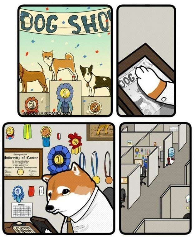 Sad and funny web comic about a dog who won a lot of awards, but you pan out to see the dog is sad and in a cubicle looking at the remnants of the past.