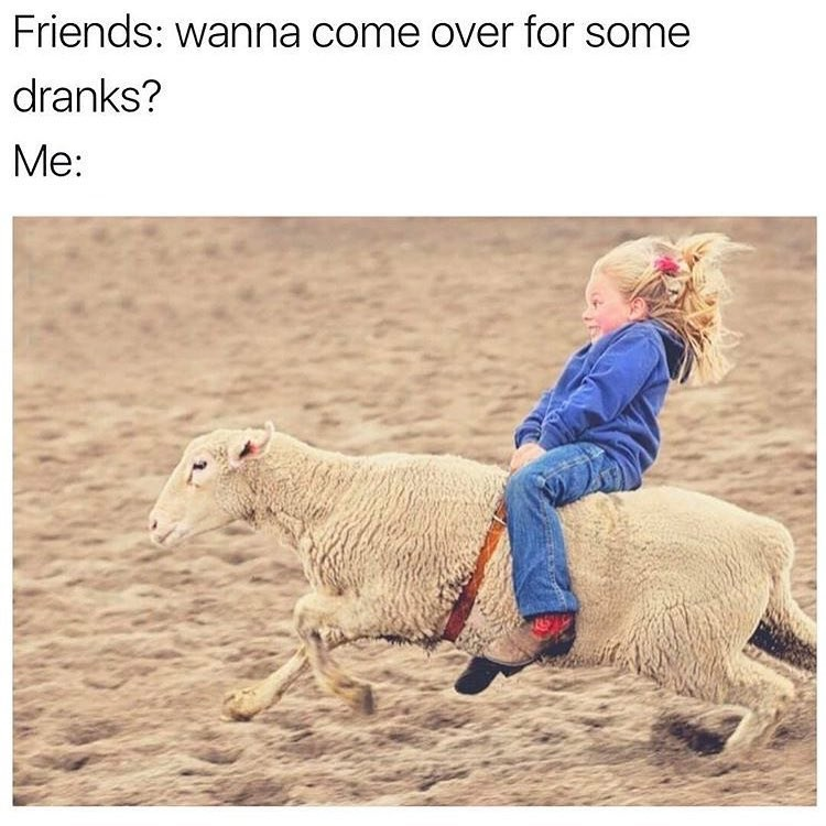 Meme of kid riding on a sheep as how it feels when friend invites you over for drinks