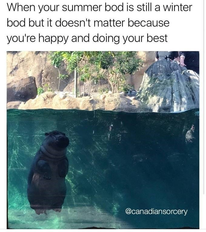 Adaptation - When your summer bod is still a winter bod but it doesn't matter because you're happy and doing your best @canadiansorcery
