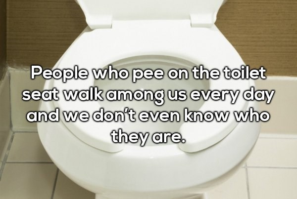 Toilet seat - People who pee on the toilet seat walk among us every day and we don't even know who they are.