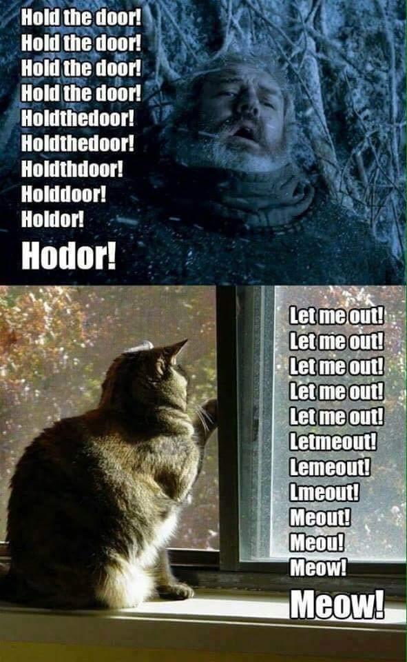 Cat - Hold the door! Hold the door! Hold the door! Hold the door! Holdthedoor! Holdthedoor! Holdthdoor! Holddoor! Holdor! Hodor! Let me out! Let me out! Let me out! Let me out! Let me out! Letmeout! Lemeout! Lmeout! Meout! Meou! Meow! Meow!