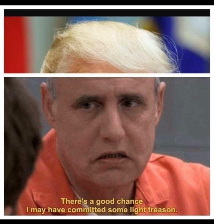 Arrested Development meme of George Bluth saying he might have committed some light treason with the hair of Donald Trump