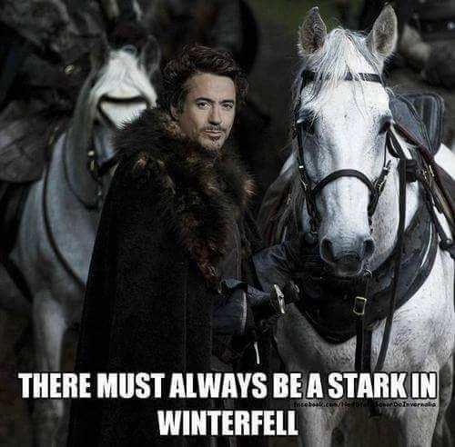 Meme joking that there must always be a Stark in Winterfell with Robert Downey Jr as Tony Stark with his horses.
