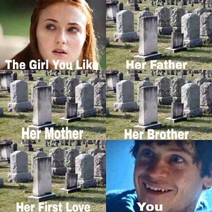 Sansa Stark meme about the girl you like.
