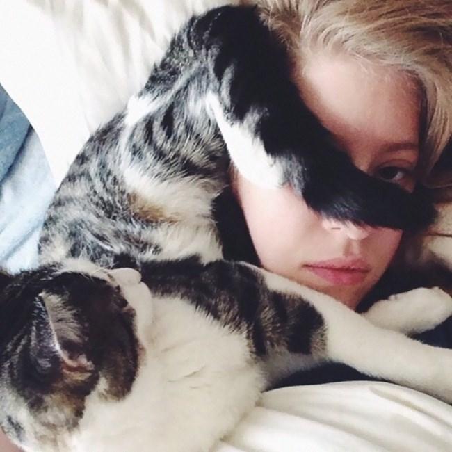cat on girls face