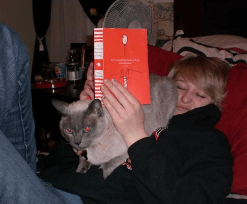 cat butt in face of woman reading a book