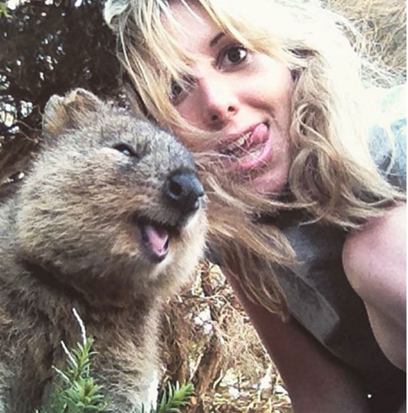 quokka taking selfie with blonde woman
