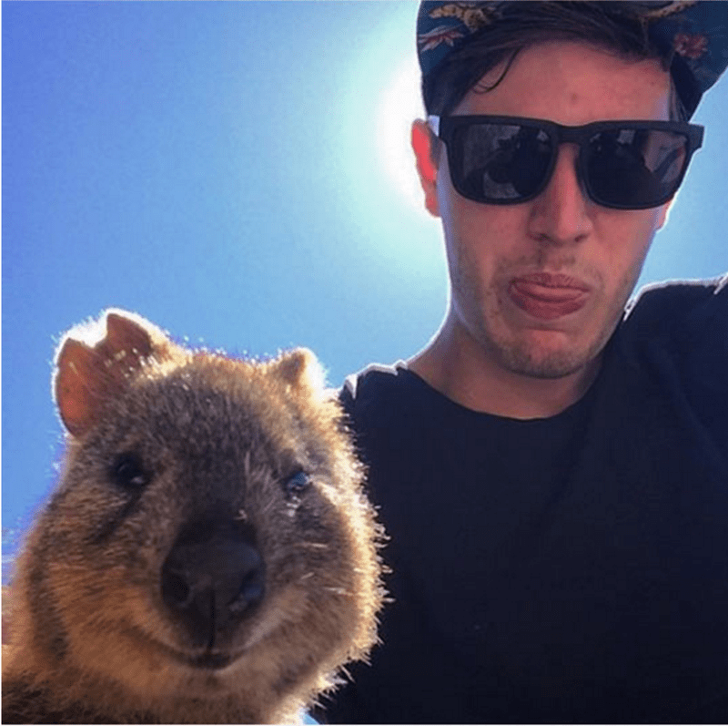 dude taking goofy selfie with a quokka