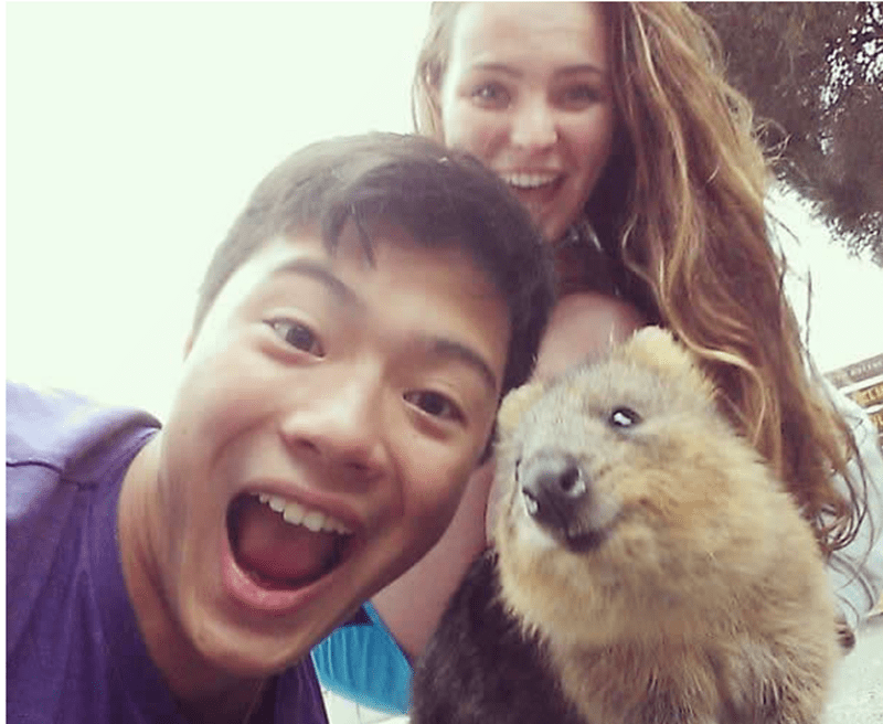 Asian dude and girl posing with a smiling quokka
