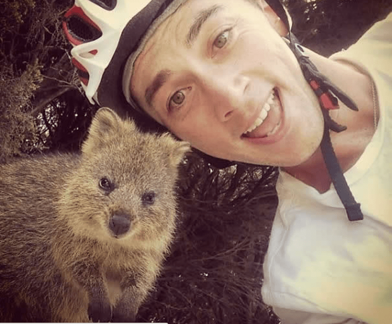 angry quokka selfie with bike rider