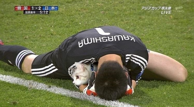 Defeated goalie photoshopped to look like he is cuddling a cat.