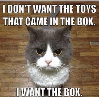 Cat meme about wanting the box instead of the toys that came in it