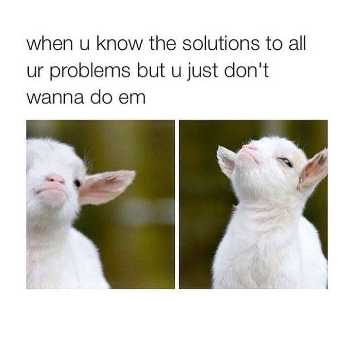 Funny meme about knowing your problems but not wanting to solve them.
