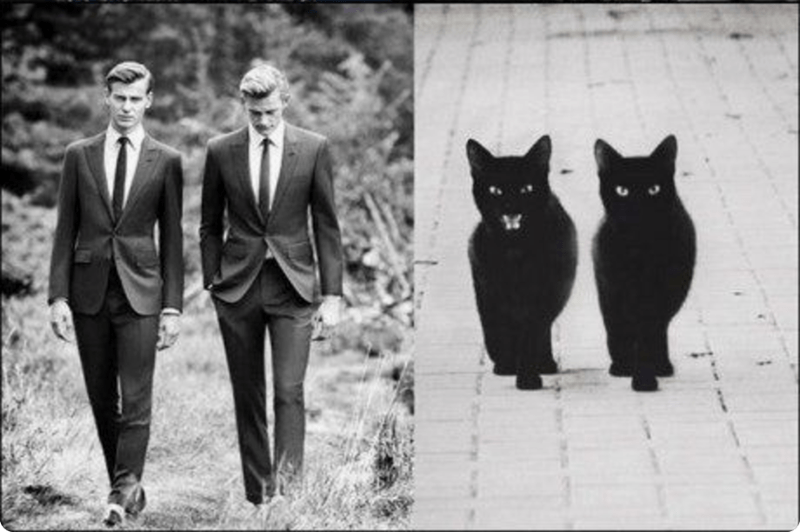 Two male models walking side by side with similar picture with black cats, one with open mouth reaction