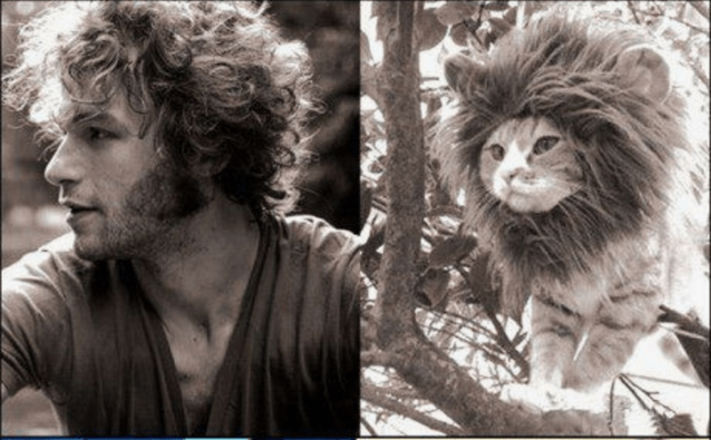 Very scruffy and hairy male model and cat wearing a faux lions mane.