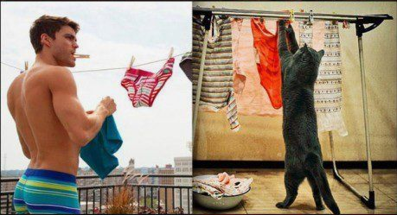 Male model hanging up his laundry and cat doing similar activity.