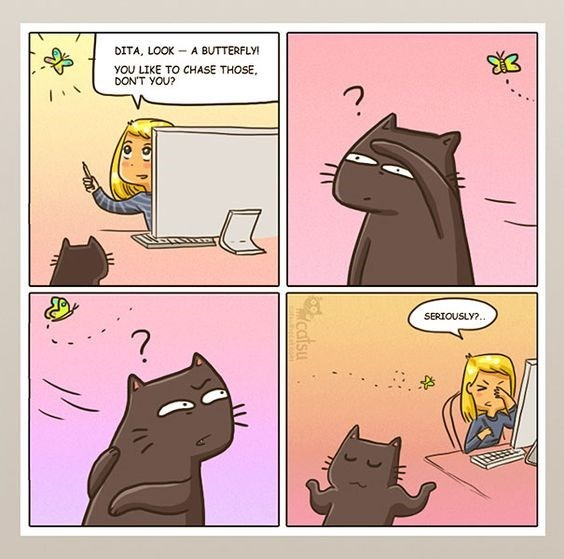 cat comic about computers and butterflies