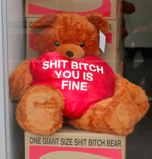 Teddy bear - SHIT BITCH YOU IS FINE ONE GIANT SIZE SHIT BITCH BEAR