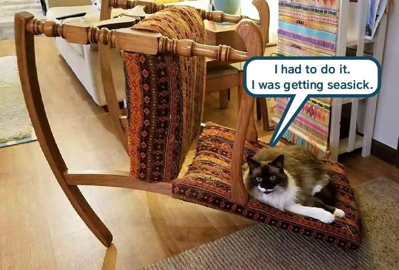 Cat meme of a kitty that rocked the rocking chair too much till it fell over, with caption having the cat blaming it on sea sickness.