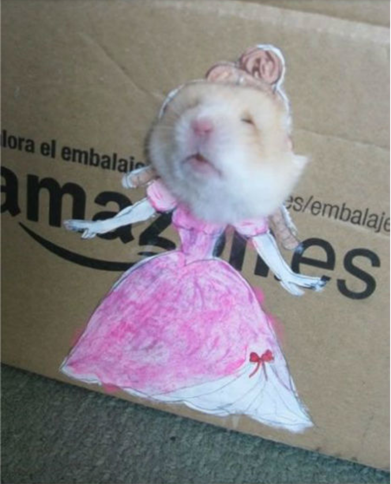 Hamster princess in thought
