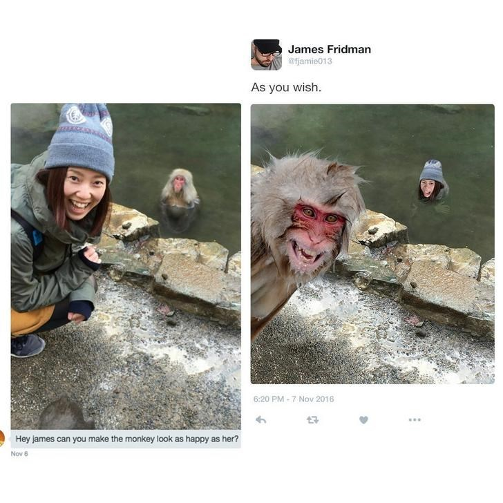Adaptation - James Fridman @fjamie013 As you wish. 6:20 PM-7 Nov 2016 Hey james can you make the monkey look as happy as her? Nov 6