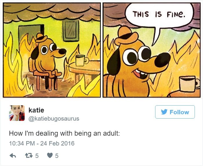 Cartoon - THIS IS FINE katie Follow @katiebugosaurus How I'm dealing with being an adult: 10:34 PM - 24 Feb 2016 5 5
