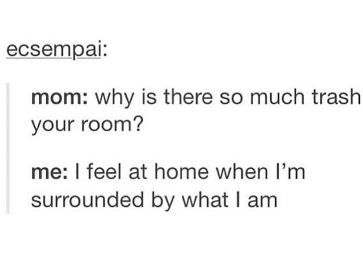 Text - ecsempai: mom: why is there so much trash your room? me: I feel at home when I'm surrounded by what I am