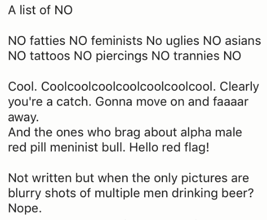 Text - A list of NO NO fatties NO feminists No uglies NO asians NO tattoos NO piercings NO trannies NO Cool. Coolcoolcoolcoolcoolcoolcool. Clearly you're a catch. Gonna move on and faaaar away And the ones who brag about alpha male red pill meninist bull. Hello red flag! Not written but when the only pictures are blurry shots of multiple men drinking beer? Nope