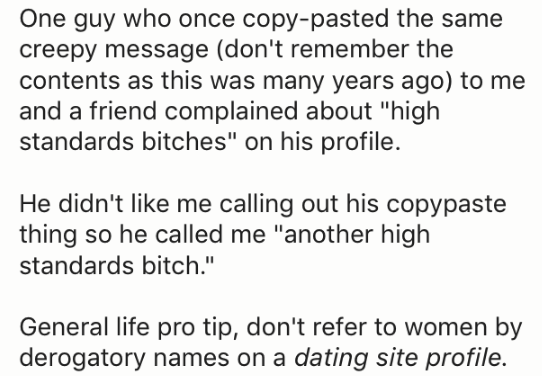 """Text - One guy who once copy-pasted the same creepy message (don't remember the contents as this was many years ago) to me and a friend complained about """"high standards bitches"""" on his profile He didn't like me calling out his copypaste thing so he called me """"another high standards bitch."""" General life pro tip, don't refer to women by derogatory names on a dating site profile."""