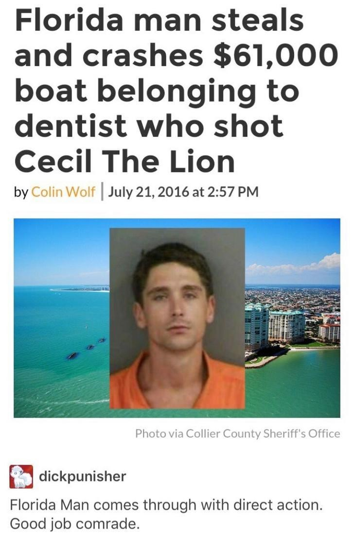 Florida man crashes a boat that belonged to the dentist that shot cecil the lion