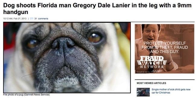 Florida man Gregory Dale Lanier is shot in his leg by his dog