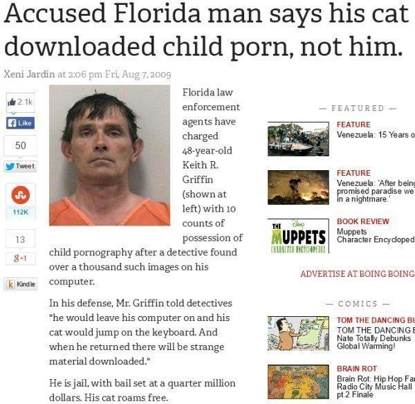 Florida man says his cat downloaded child porn