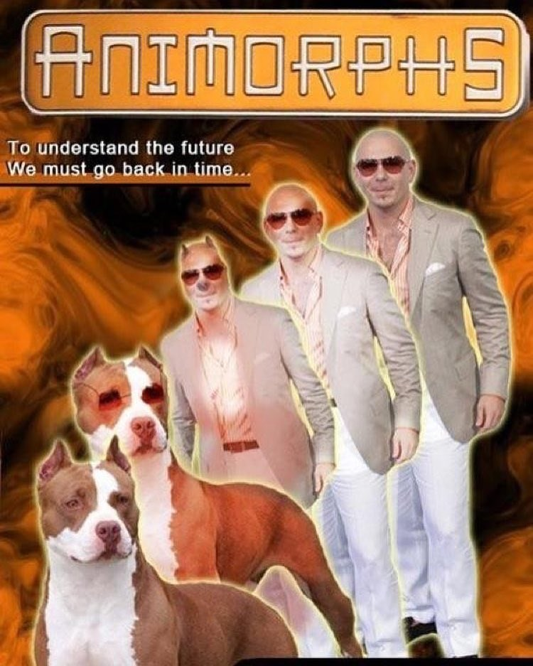 Funny meme about pitbull as an animorph turning into a pitbull dog and caption about needing to go back in time.