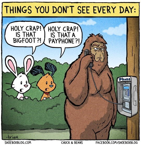 Cartoon - THINGS YOU DON'T SEE EVERY DAY: HOLY CRAP!Y HOLY CRAP! IS THAT BIGFOOT?!PAYPHONE?! IS THAT A Phone -briaN. SHOEBOXBLOG.COM FACEBOOK.COM/SHOEBOXBLOG CHUCK & BEANS