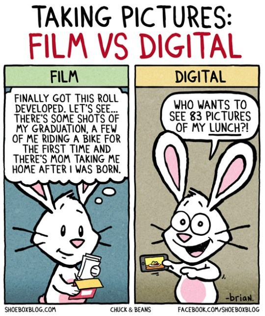 Rabbit cartoon about the difference with regular film and digital