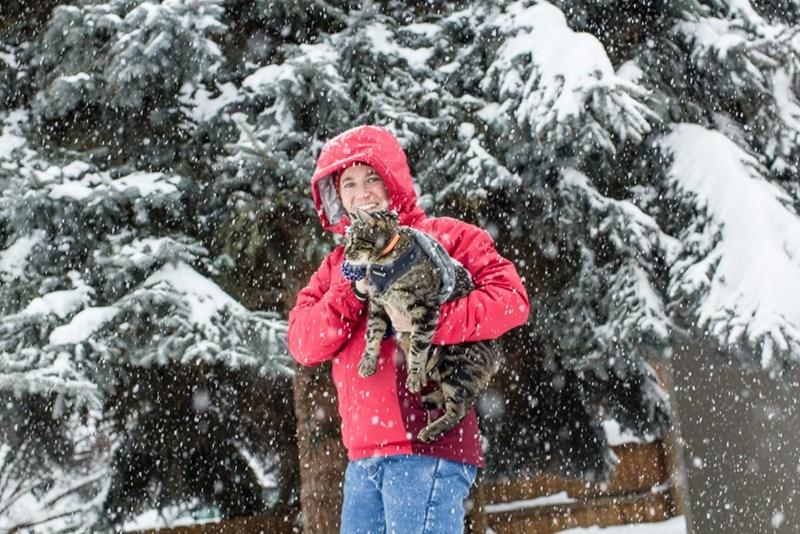 Jasper the adventure cat in the snow of winter