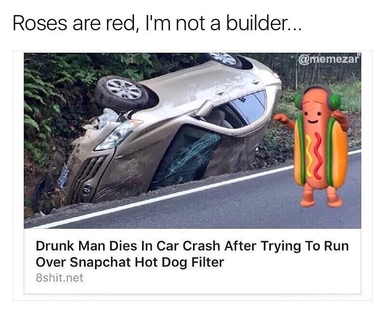 Funny snapchat hot dog filter meme about a man dying in a car crash""